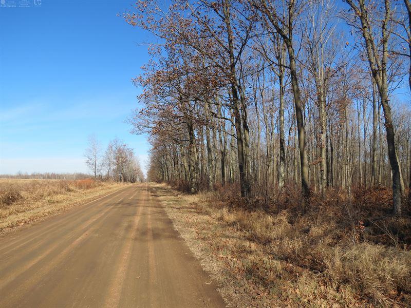 80 Acres For Recreation Or Building : Hatley : Marathon County : Wisconsin