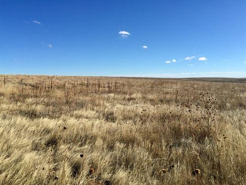 Matheson Rural 80 : Matheson : Elbert County : Colorado