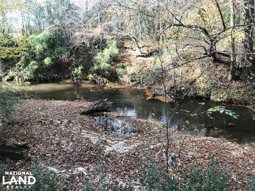 Tick Creek Tract : Seminary : Covington County : Mississippi