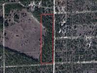 Private 10 Acres North Florida : Bronson : Levy County : Florida