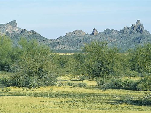 Quiet Desert Retreat : Arizona City : Pinal County : Arizona