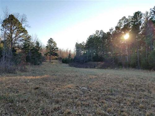 982 Acre Recreational Hunting Prop : Birch Tree : Oregon County : Missouri