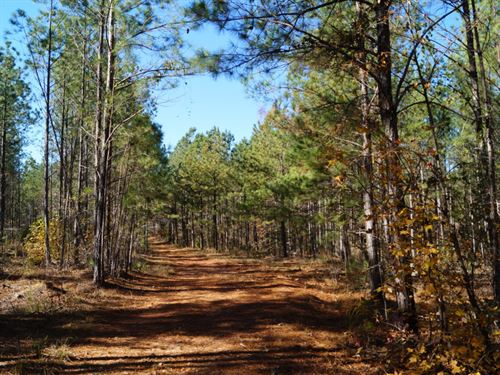Pg 2433 : Ninety Six : Greenwood County : South Carolina