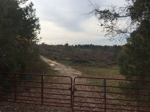 190.79 Acres in Chester, SC : Chester : South Carolina