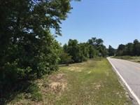 Angelus 90 : Angelus : Chesterfield County : South Carolina