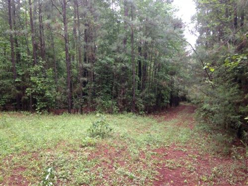 230 Acres in Prince George, VA : Prince George : Virginia