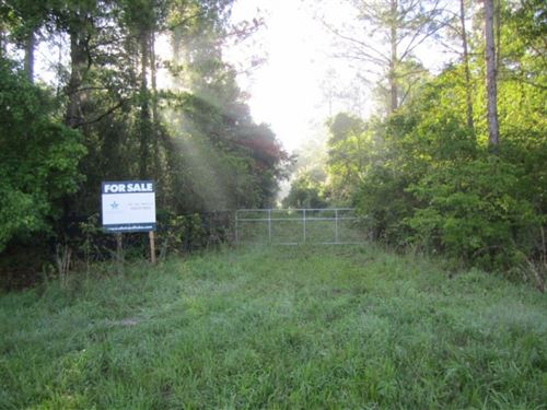 Hague 120, 127 Acres Alachua, FL : Gainesville : Alachua County : Florida