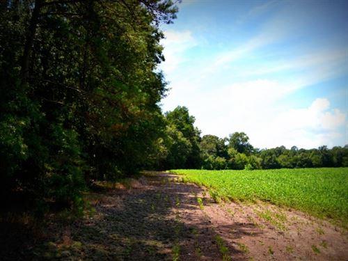 Austin South Tract : Marshville : Union County : North Carolina