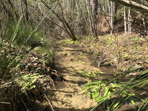 143 Acres in Mount Pleasant, FL : Mount Pleasant : Gadsden County : Florida