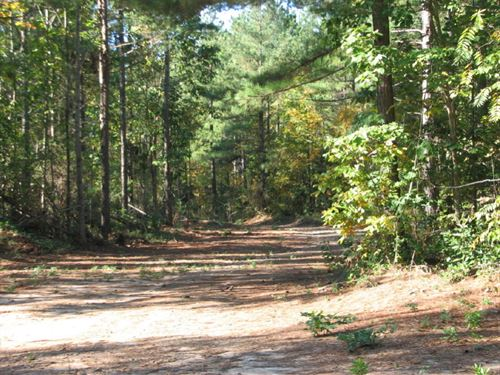 Cedar Grove : Blackstone : Nottoway County : Virginia