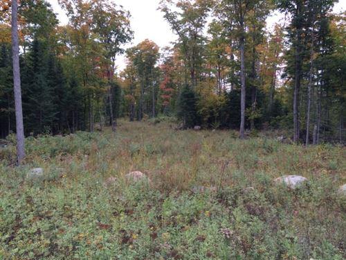 Beaufort Lake Road : Nestoria : Baraga County : Michigan