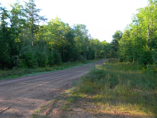 Beartown Road : Baraga : Michigan