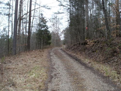 Ballplay Tract Price Reduced : Vonore : Monroe County : Tennessee