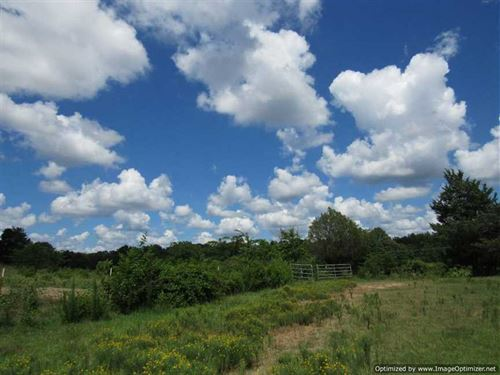 Looking For a Pasture Land Tract : Greenwood : Carroll County : Mississippi