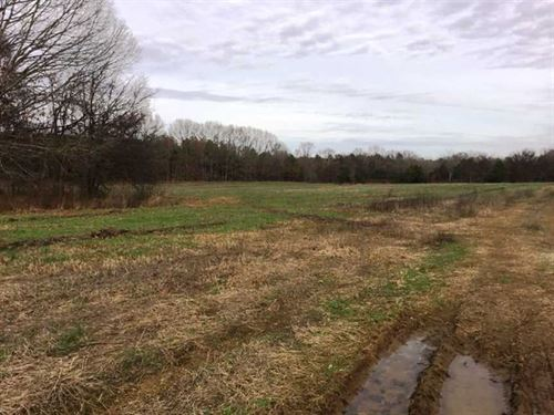 County Line Farm : Russellville : Lawrence County : Alabama