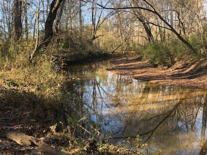 Choestoea Creek Farm : Westminster : Oconee County : South Carolina