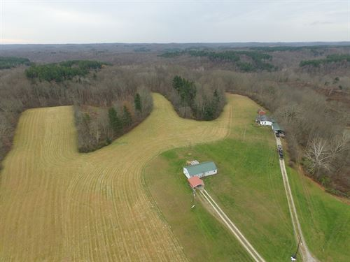 Scenic Rd - 36 Acres : Glouster : Perry County : Ohio
