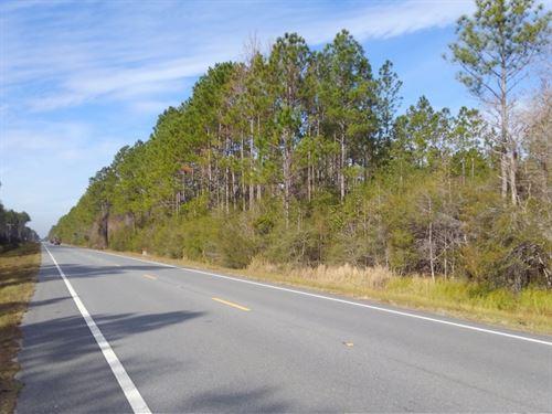 Wewahitchka West : Wewahitchka : Gulf County : Florida