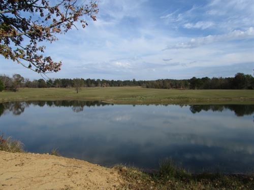400 Acres In Grenada County : Grenada : Mississippi