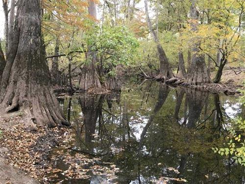 L'aigle Creek Tract, Bradley Count : Hermitage : Bradley County : Arkansas