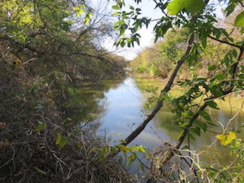 T & P Ranch : Baird : Callahan County : Texas