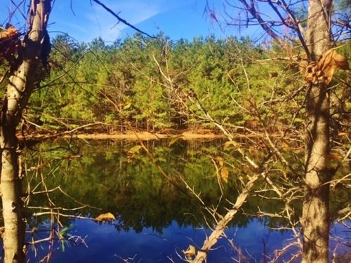 Rural Land For Sale McComb, Pike Co : Summit : Pike County : Mississippi