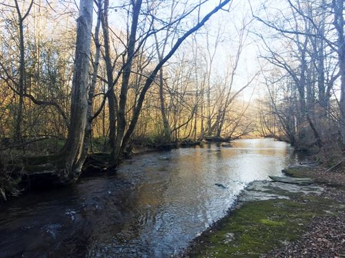 Clear Creek Tract 1550 : Lawrenceburg : Lawrence County : Tennessee