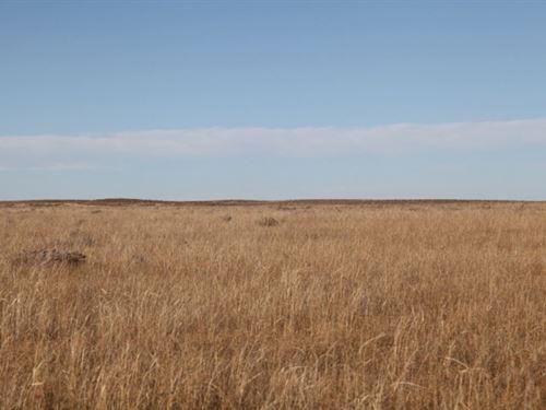 Lon & Mollie Timpe Estate Land : Brush : Morgan County : Colorado