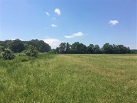 Farm Land OR Building Site Close : Beebe : White County : Arkansas