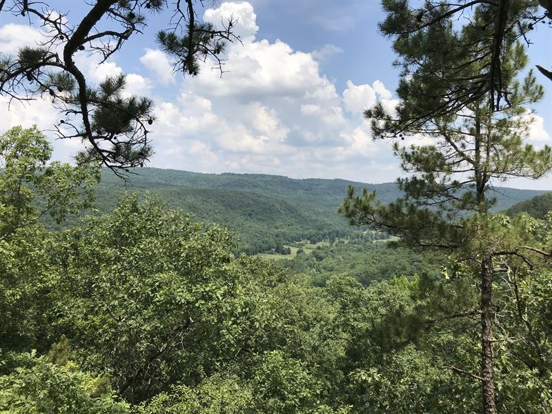 95 Ac Wooded Hunting / Rec Land : Clinton : Van Buren County : Arkansas