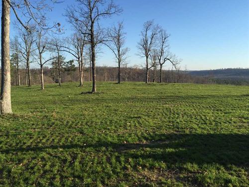 150 Acres With Beautiful Build : Marshall : Searcy County : Arkansas