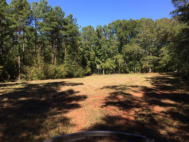 Incredible Wooded Acreage : Griffin : Spalding County : Georgia