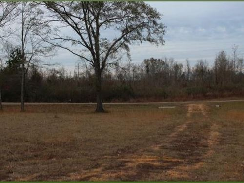 12 Acres In Lincoln County, Ms : Brookhaven : Lincoln County : Mississippi