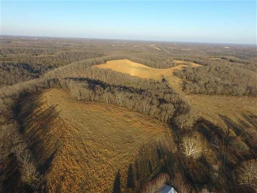 618 Acre Pasture/Timber Mix Use in : Cape Fair : Stone County : Missouri