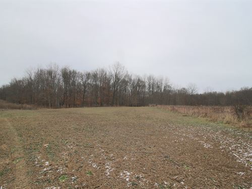 Meeksville Rd - 100 Acres : Mc Arthur : Vinton County : Ohio