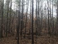 Hunting Retreat : Crawfordville : Taliaferro County : Georgia