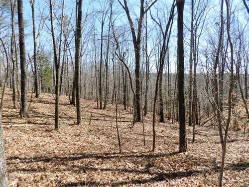 16.25 Acres Near Russellville, Ala : Russellville : Franklin County : Alabama