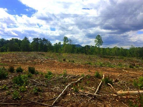 Quinn Tract : Gastonia : Gaston County : North Carolina