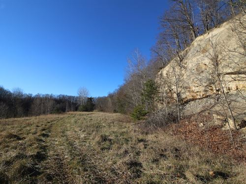 Jessie Creek Rd - 302 Acres : Bidwell : Gallia County : Ohio