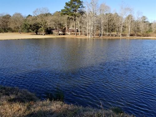 Rustic Home/Cabin And 49.09 Acres : McComb : Pike County : Mississippi