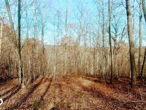 15 Acre Home Site Overlooking Flat : Rougemont : Durham County : North Carolina