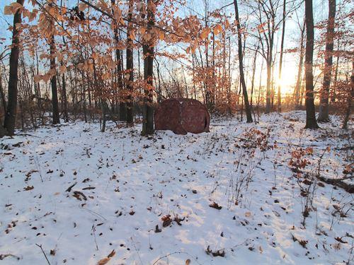 Cr 33 - 35 Acres : Warsaw : Coshocton County : Ohio