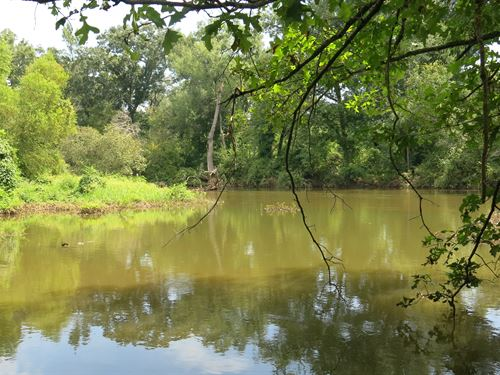 174 Acres Neches River : Palestine : Anderson County : Texas