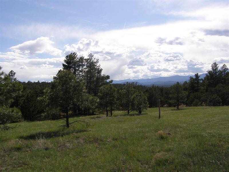 Apishapa River Ranch : Gulnare : Las Animas County : Colorado