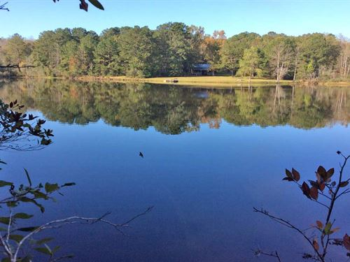 Co Rd 372 Tract With Cabin And Lake : Elba : Coffee County : Alabama