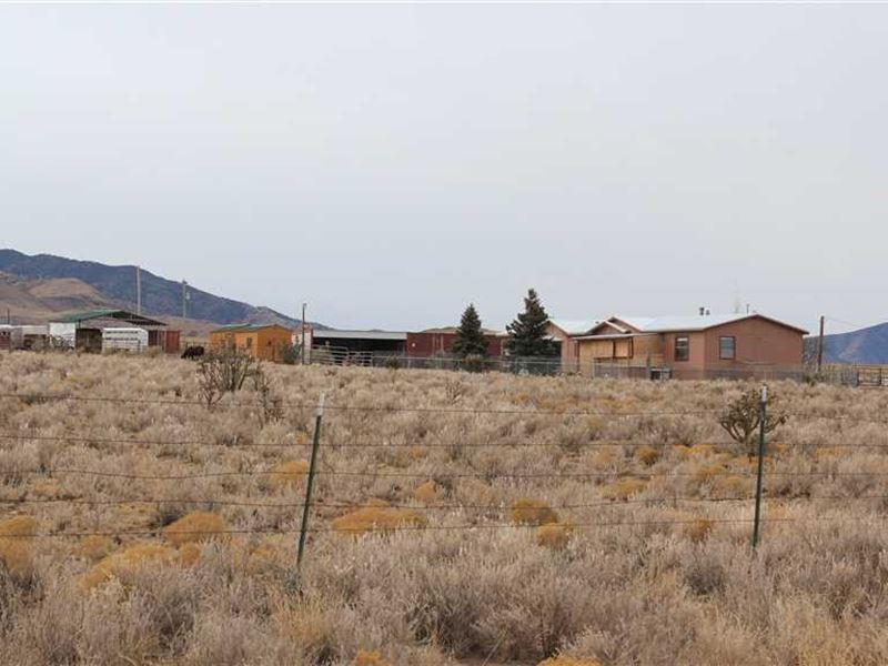 Home on 10 Acres With Shop, Hay Ba : Nogal : Lincoln County : New Mexico