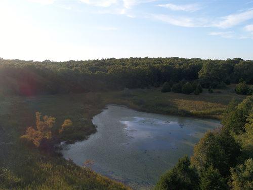 116.5 Acres - Wildlife Galore : Salem : Dent County : Missouri