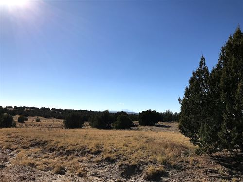 35.52 Acres In Walsenburg, CO : Walsenburg : Las Animas County : Colorado