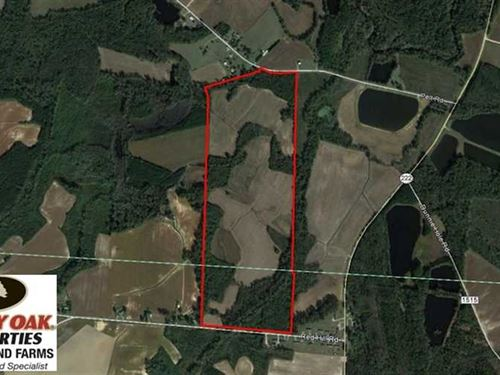 Reduced, 125 Acres of Farm And Ti : Stantonsburg : Wilson County : North Carolina