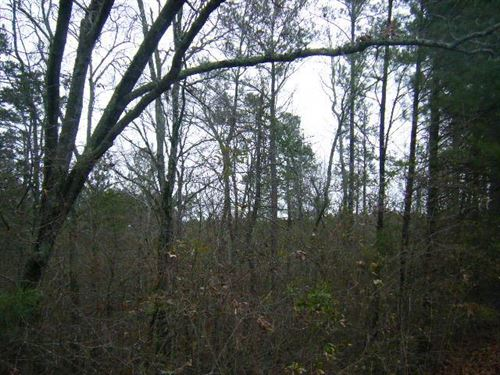 23.49 Beautiful Acres In Greensboro : Greensboro : Greene County : Georgia
